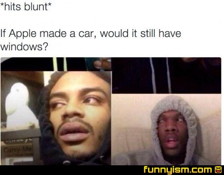 0b7fed53 c973 40f3 9220 d0b84ea3e257 hits blunt meme 2 funny pics funnyism funny pictures