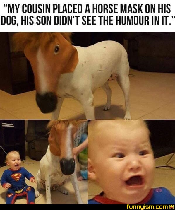 Oh Lawd Funny Pics Funnyism Funny Pictures