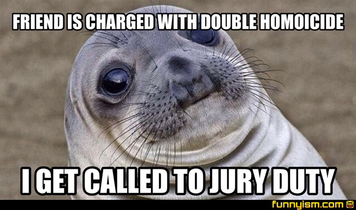 FRIEND IS CHARGED WITH DOUBLE HOMOICIDE I GET CALLED TO JURY