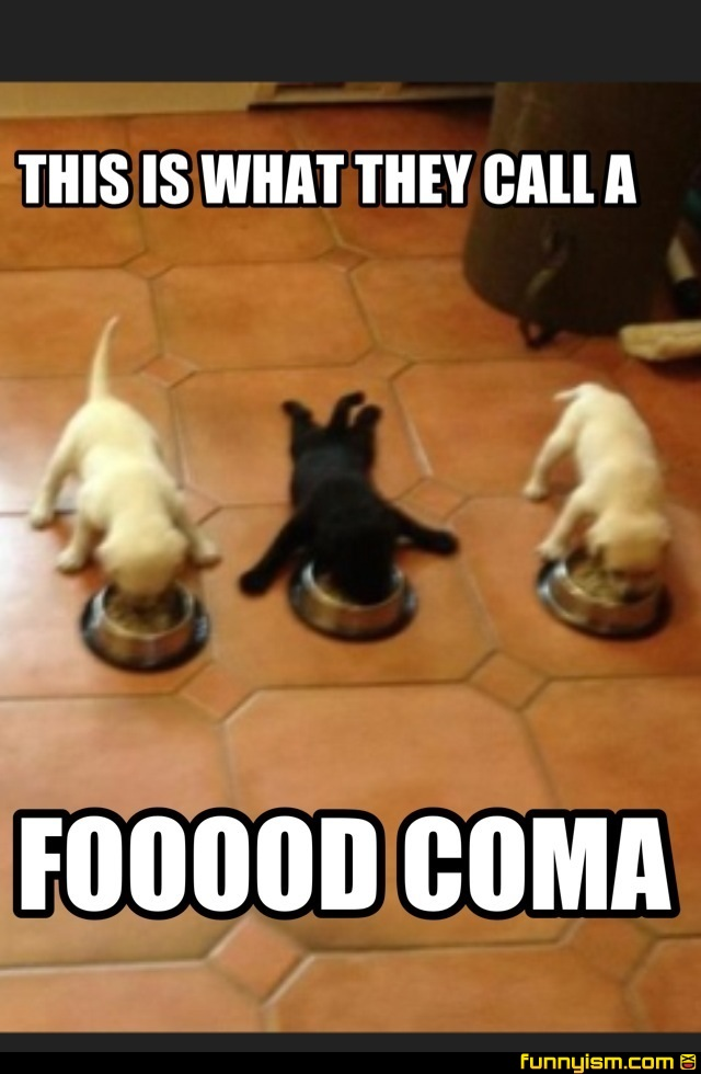 how to help food coma