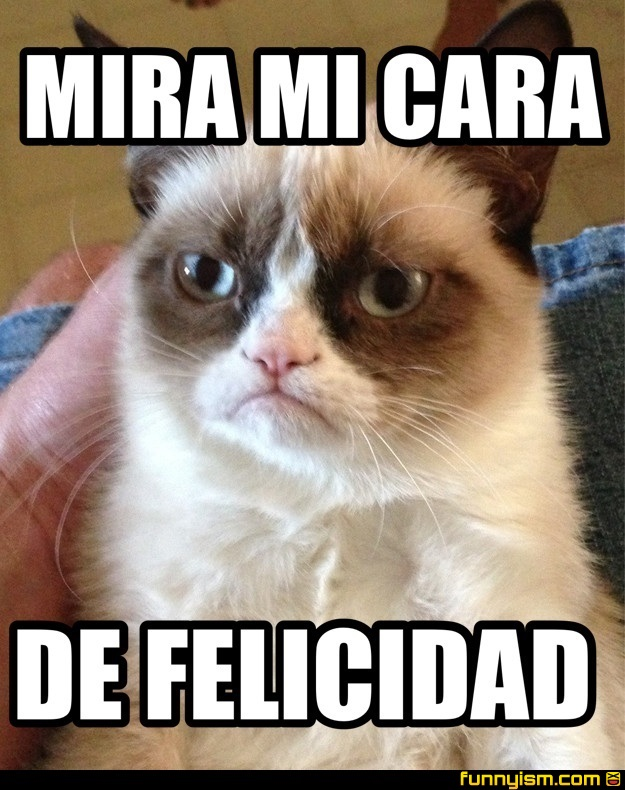 aa37c0d9 6284 40d7 b4c0 1b9eee9956c2 mira mi cara de felicidad meme factory funnyism funny pictures