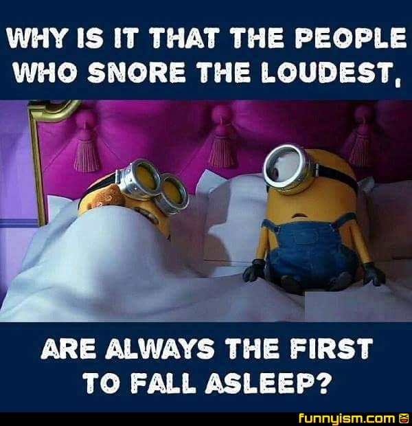 Snoring Funny Pics Funnyism Funny Pictures